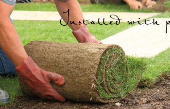 Tips For Laying New Turf – we ask the experts!