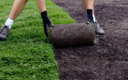 Tips For Laying New Turf - we ask the experts!