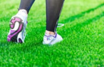 Instant Grass And The Benefits of Turf Over Grass Seed?