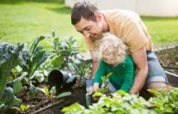 6 Tips For Sustainable Gardening