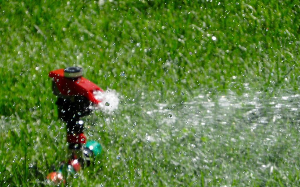 What Time Of Day Should I Water My Lawn?