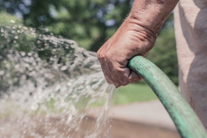 5 Signs That You're Over-watering Your Lawn