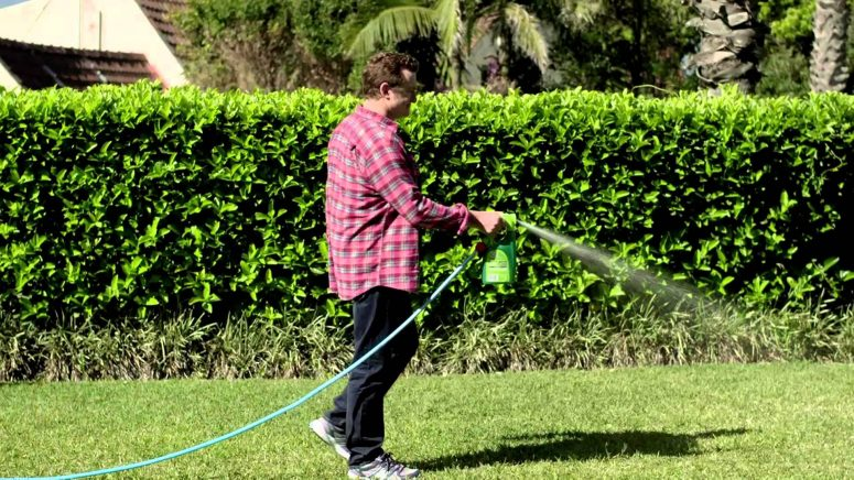 How Often Should I Fertilise My Lawn?