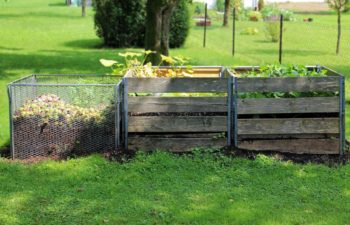 How To Compost Your Lawn And Never Use Fertilizer Again!