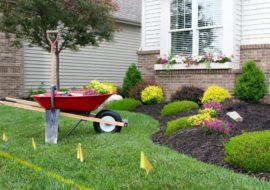 Landscaping Your Backyard- 3 Things To Consider When Re-designing