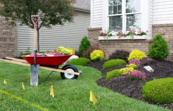 The Complete Guide To Lawn Edging – Rivers Edge Turf