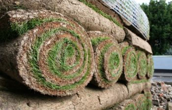 Why Removing Debris to Make Room for Your New Lawn Is a Step You Don't Want to Forget!