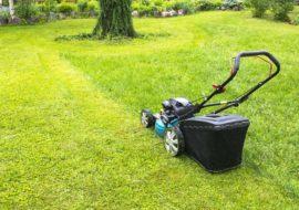 "How To Repair And Prevent A ""Scalped"" Lawn – 3 Simple Steps"