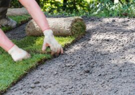 Your Guide to Laying Turf in Spring